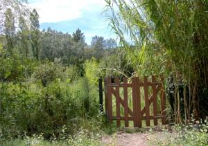 gartentor-bambus