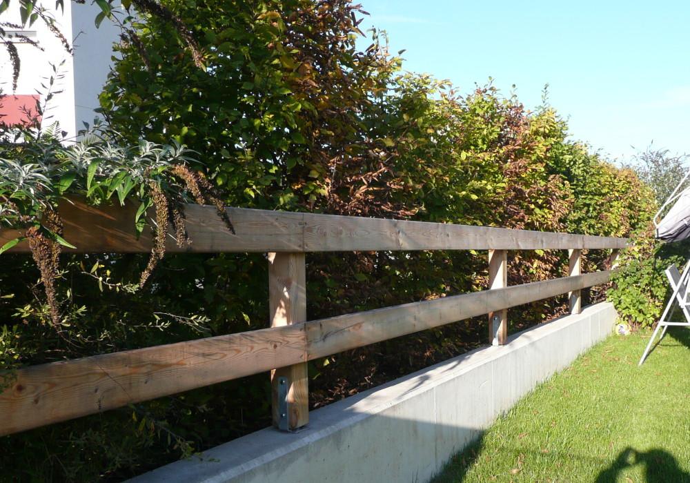 Sichtschutz Pflanzen Fur Jeden Garten Von Der Hecke Bis Zur Ranke