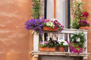 Balkon Blumensichtschutz